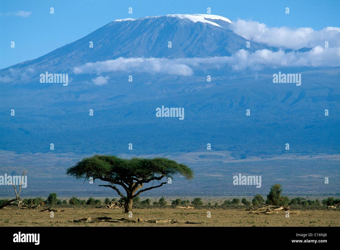 El monte Kilimanjaro, el Parque Nacional de Amboseli, Kenia, África Imagen De Stock