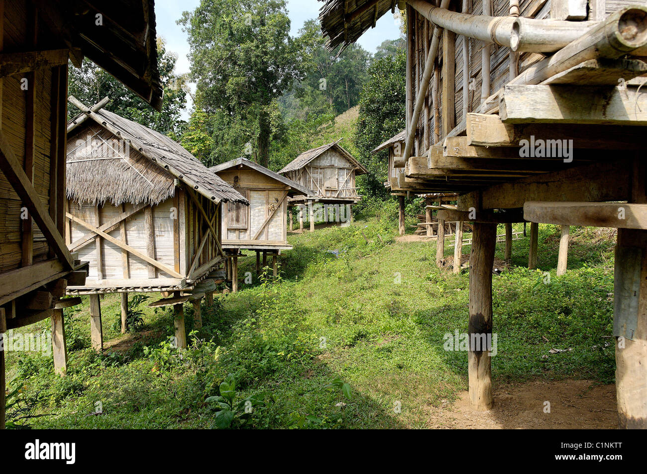 Laos, provincia de Oudomxai, Kamu grupo étnico village, en el barrio de Pakbeng Foto de stock