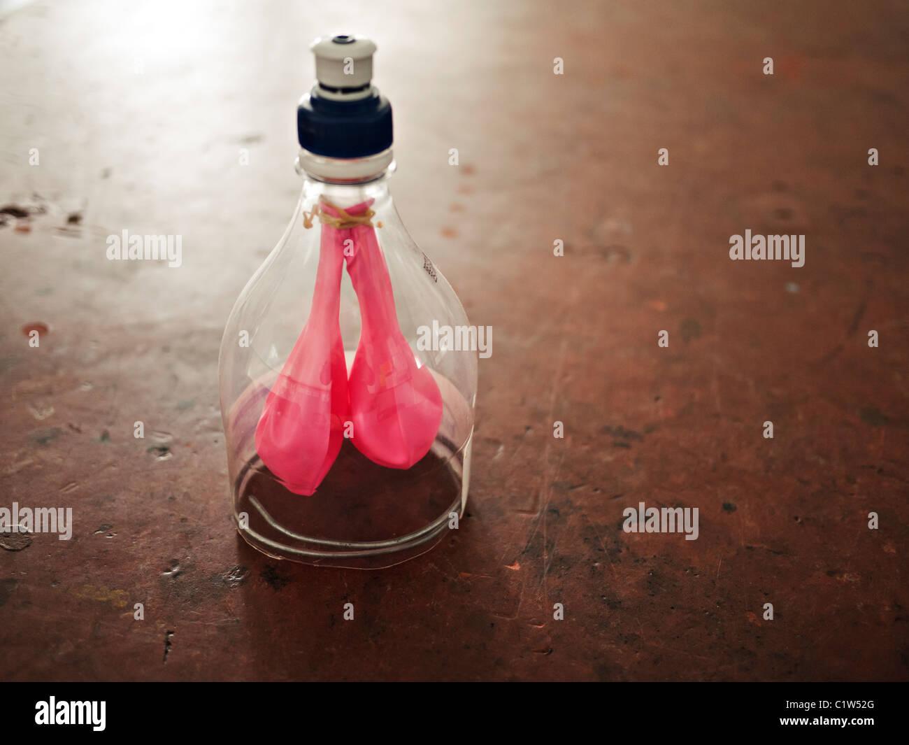 Modelo pulmones botella bebidas hechas de plástico y globos. Imagen De Stock