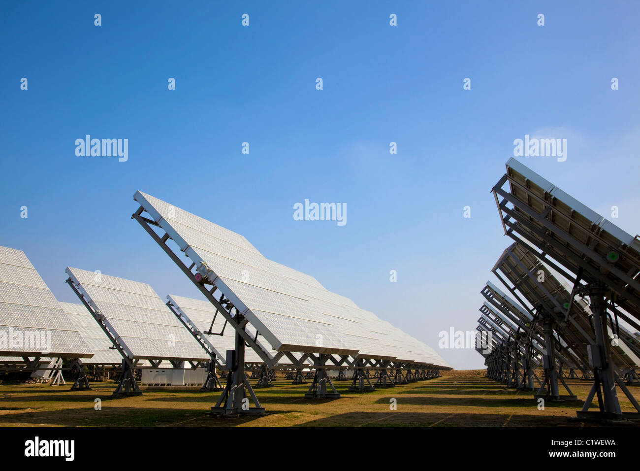 Un campo de paneles solares fotovoltaicos proporcionan energía verde Imagen De Stock