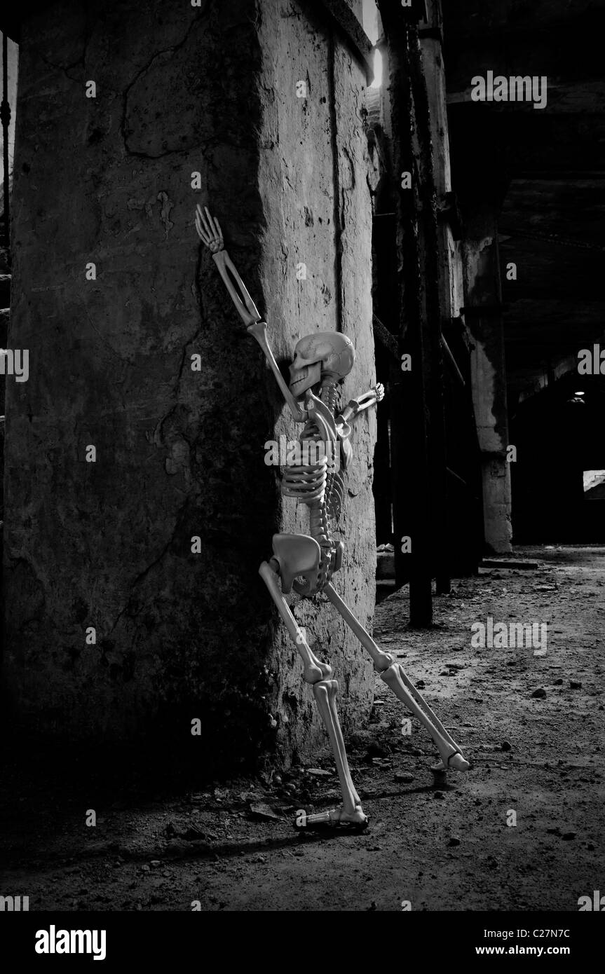 Esqueleto humano Imagen De Stock