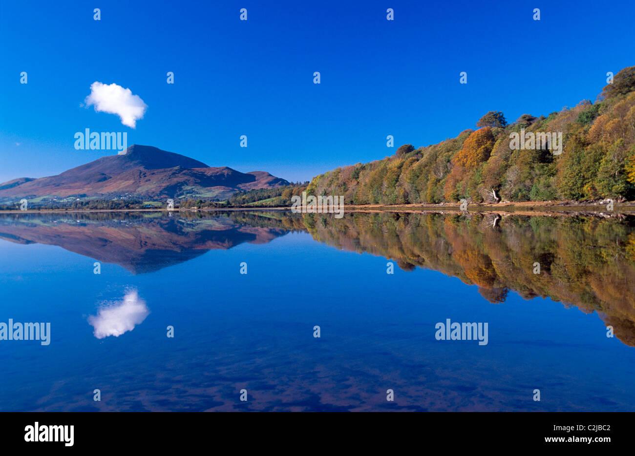 Otoño Reflexión de Muckish Montaña, Condado de Donegal, Irlanda. Imagen De Stock