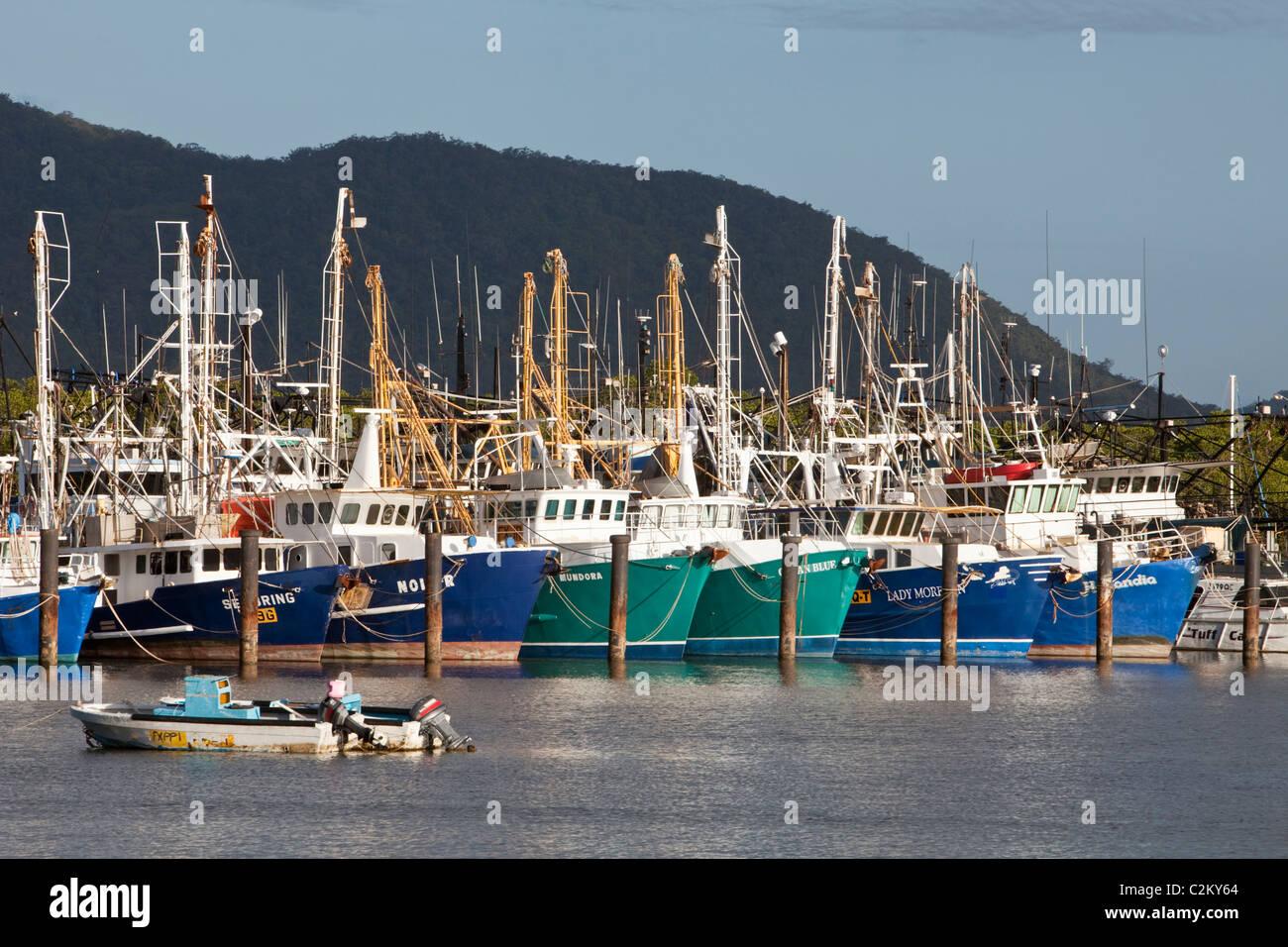 La pesca de arrastre en la base Portsmith. Cairns, Queensland, Australia Foto de stock