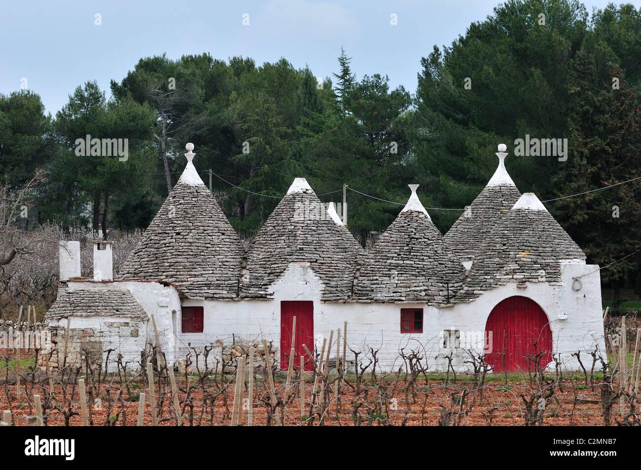 Locorotondo. Puglia. Italia. Trullo en el campo entre Locorotondo y Alberobello. Imagen De Stock