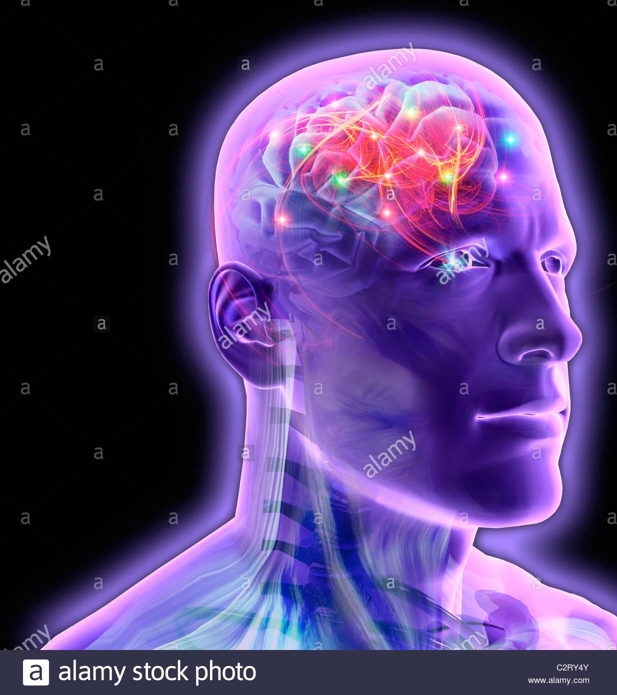 El cerebro del hombre transparente brillante y reluciente Foto de stock