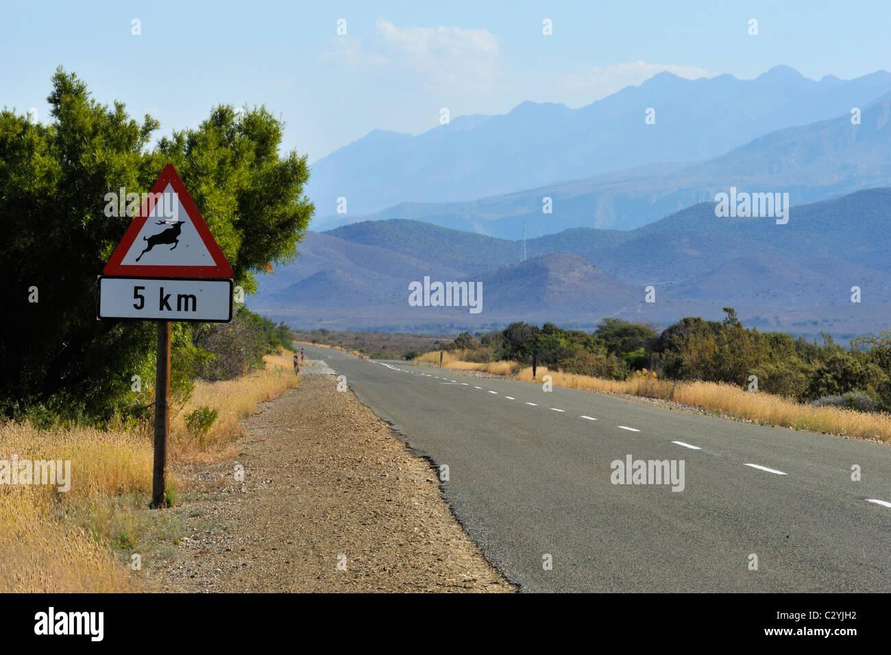 La ruta 341 hacia Oudtshoorn, Little Karoo, Sudáfrica Foto de stock