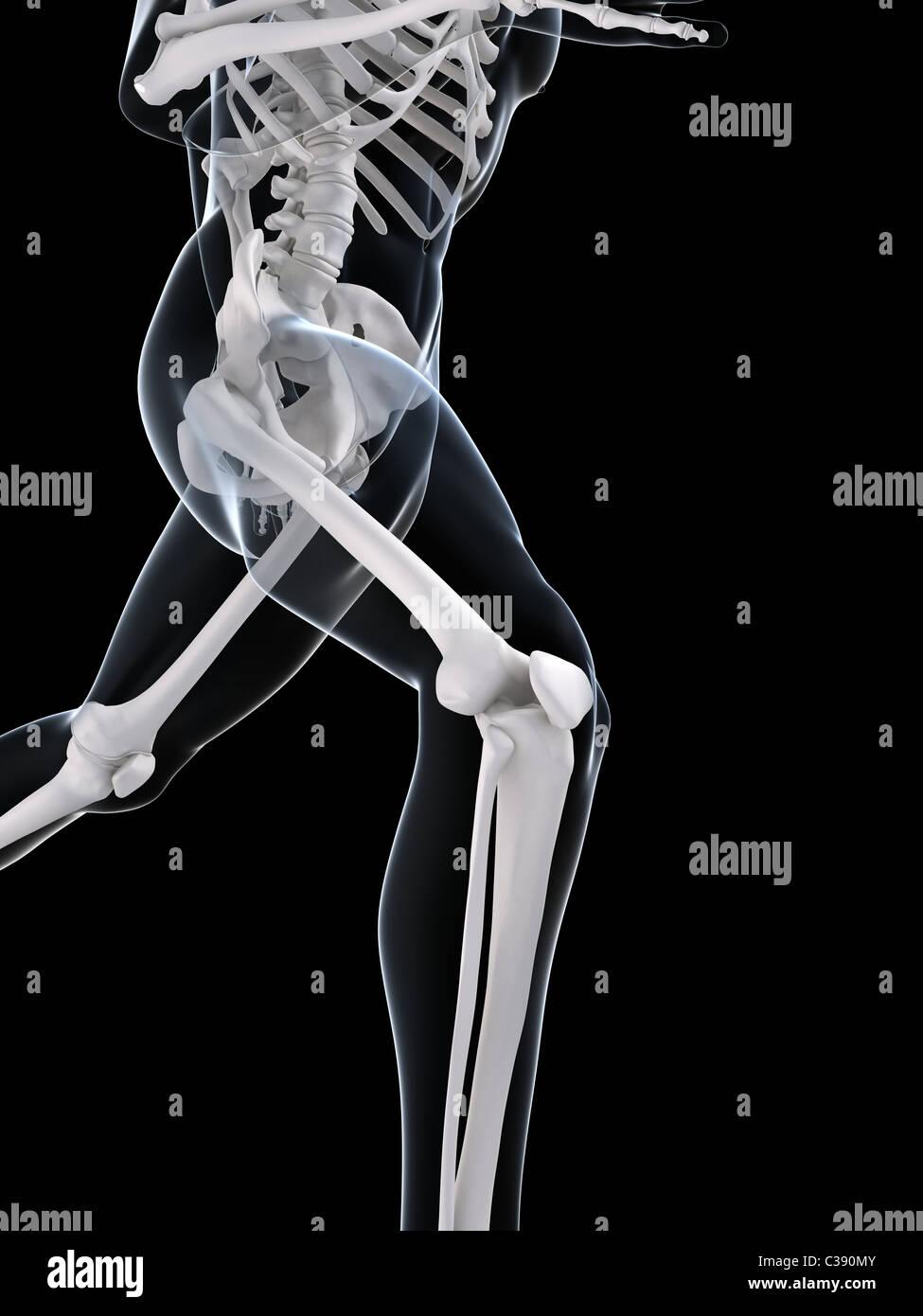 Ejecuta el esqueleto Foto de stock