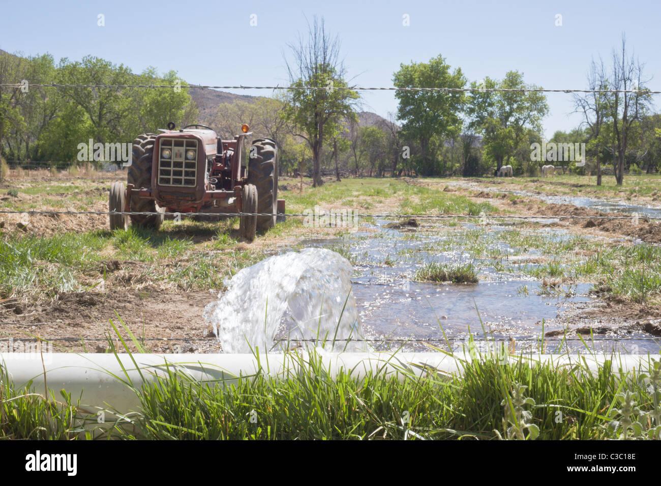 El agua para la Agricultura y la ganadería es un bien valioso en el Hondo Valle, Nuevo México. Imagen De Stock