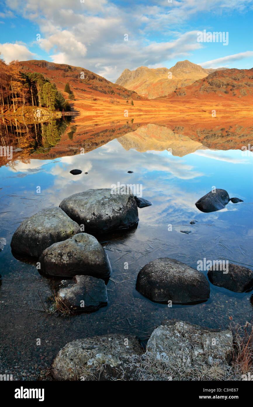 Líneas de hielo a finales de otoño las orillas rocosas de Blea Tarn en frente de un perfecto reflejo del Imagen De Stock