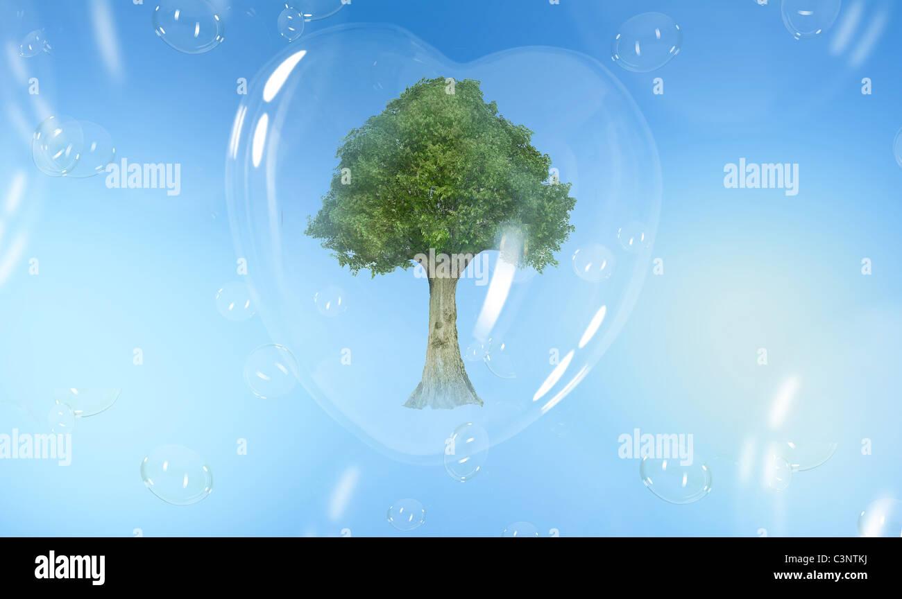 Árbol verde en una burbuja de jabón en forma de corazón Imagen De Stock