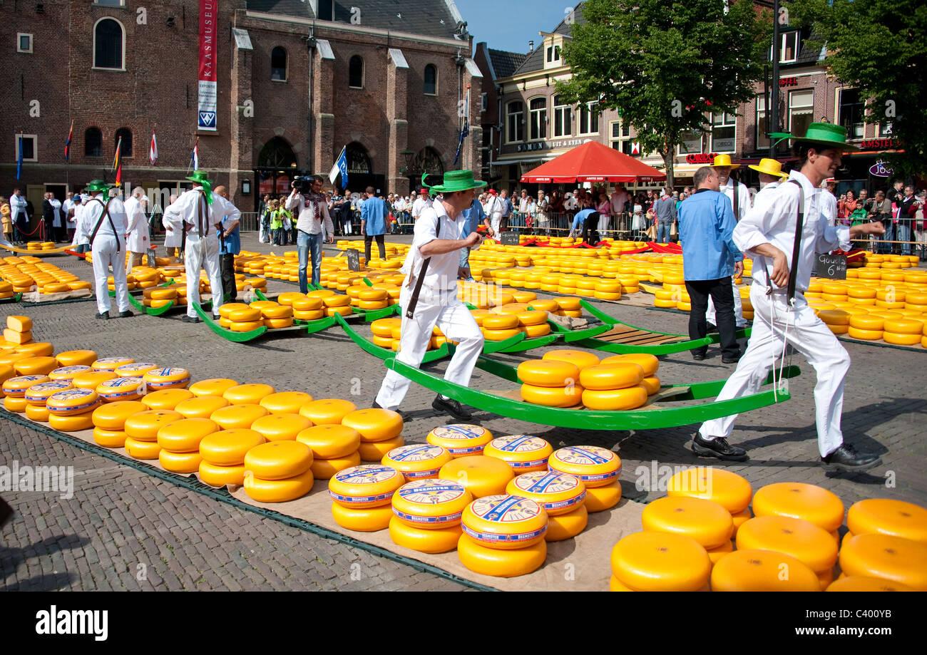 Pesaje De Queso Y La Compra En El Tradicional Mercado De Quesos De Alkmaar Países Bajos Fotografía De Stock Alamy