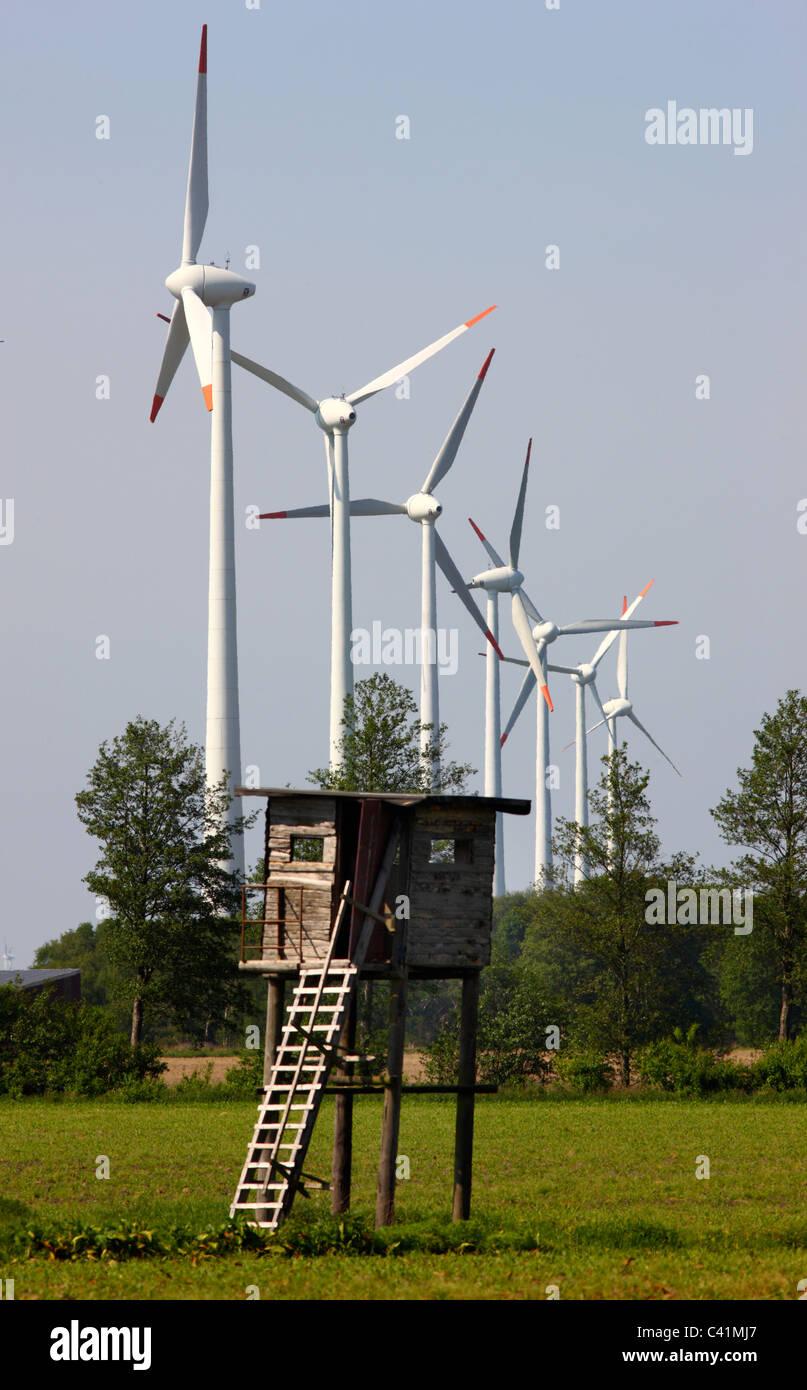 Parque de energía eólica, venados de madera stand, cerca Rhede, Alemania. Imagen De Stock