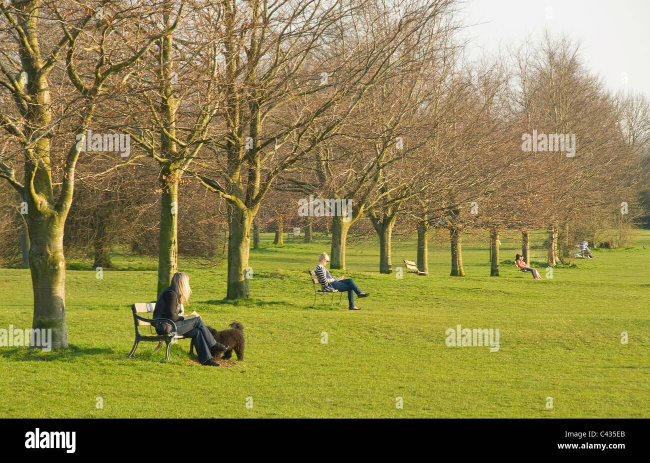 Personas Sentadas En Las Bancas De Parques, El Downs
