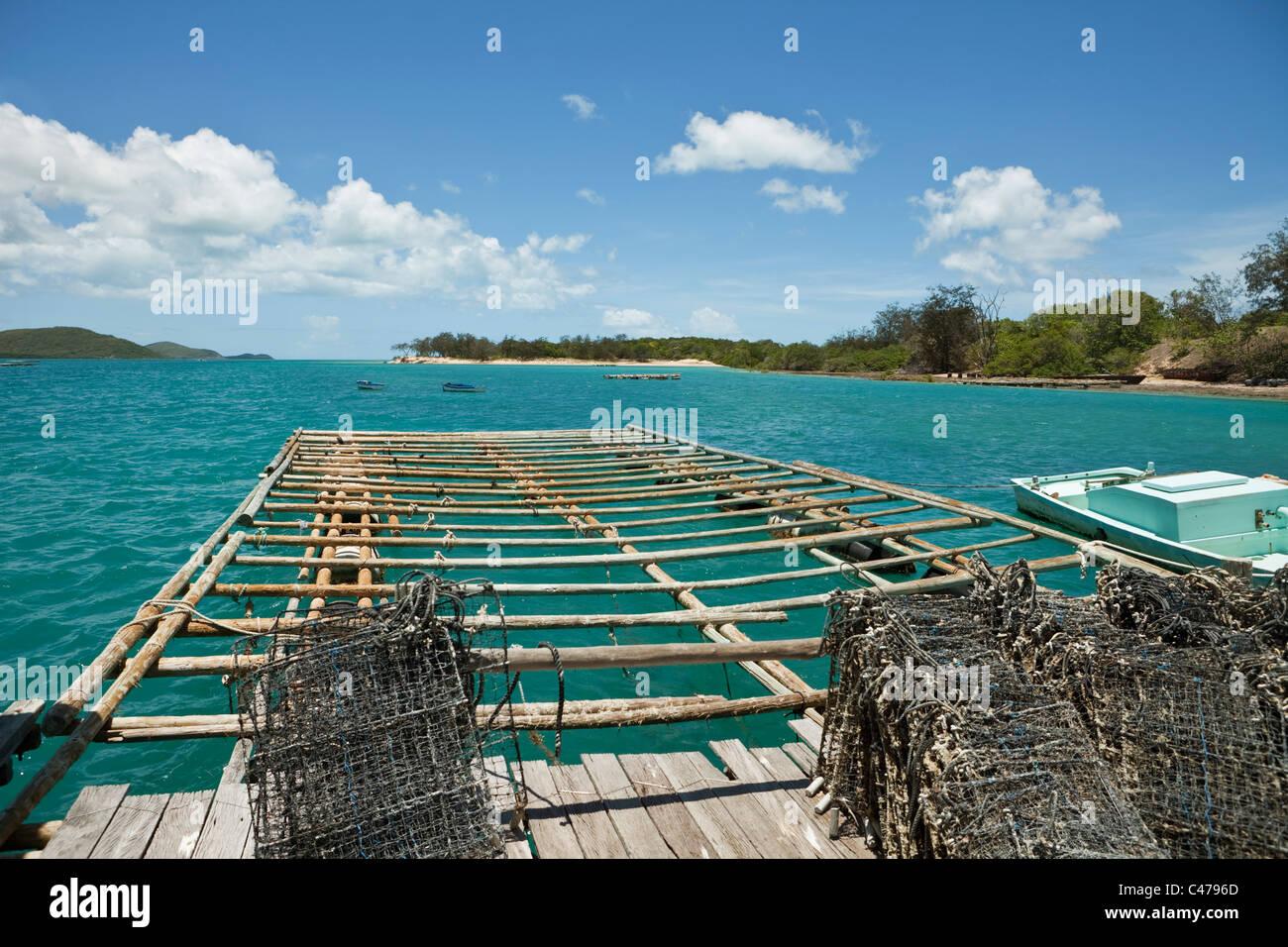 El cultivo de perlas pontón en Kazu Perlas. Viernes Isla, Islas del Estrecho de Torres, Queensland, Australia Imagen De Stock