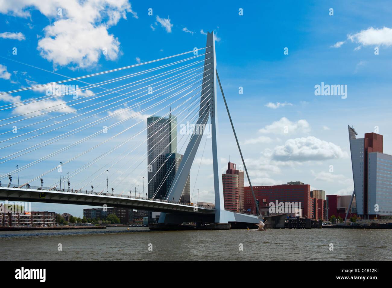 El puente Erasmus en Rotterdam, los Países Bajos, Europa Imagen De Stock