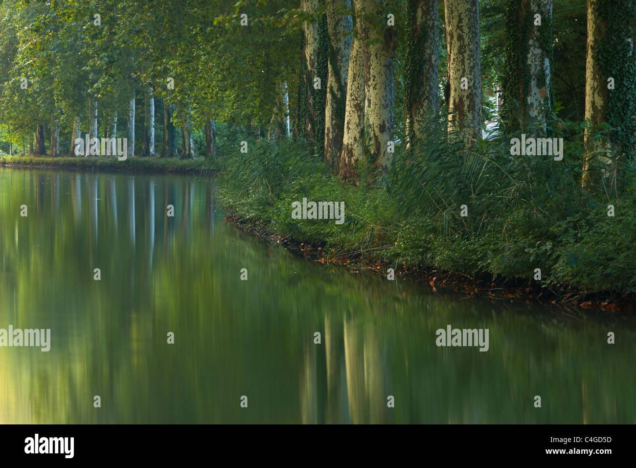 El Canal du Midi nr Castelnaudary, Aude, Languedoc-Rousillon, Francia Foto de stock