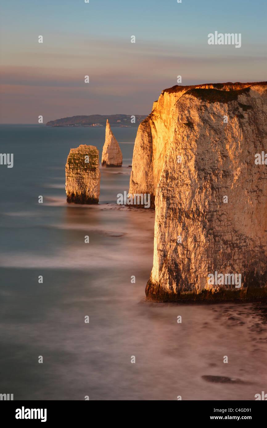 Old Harry Rocks, Handfast Point, Studland, la Costa Jurásica, en Dorset, Inglaterra Imagen De Stock