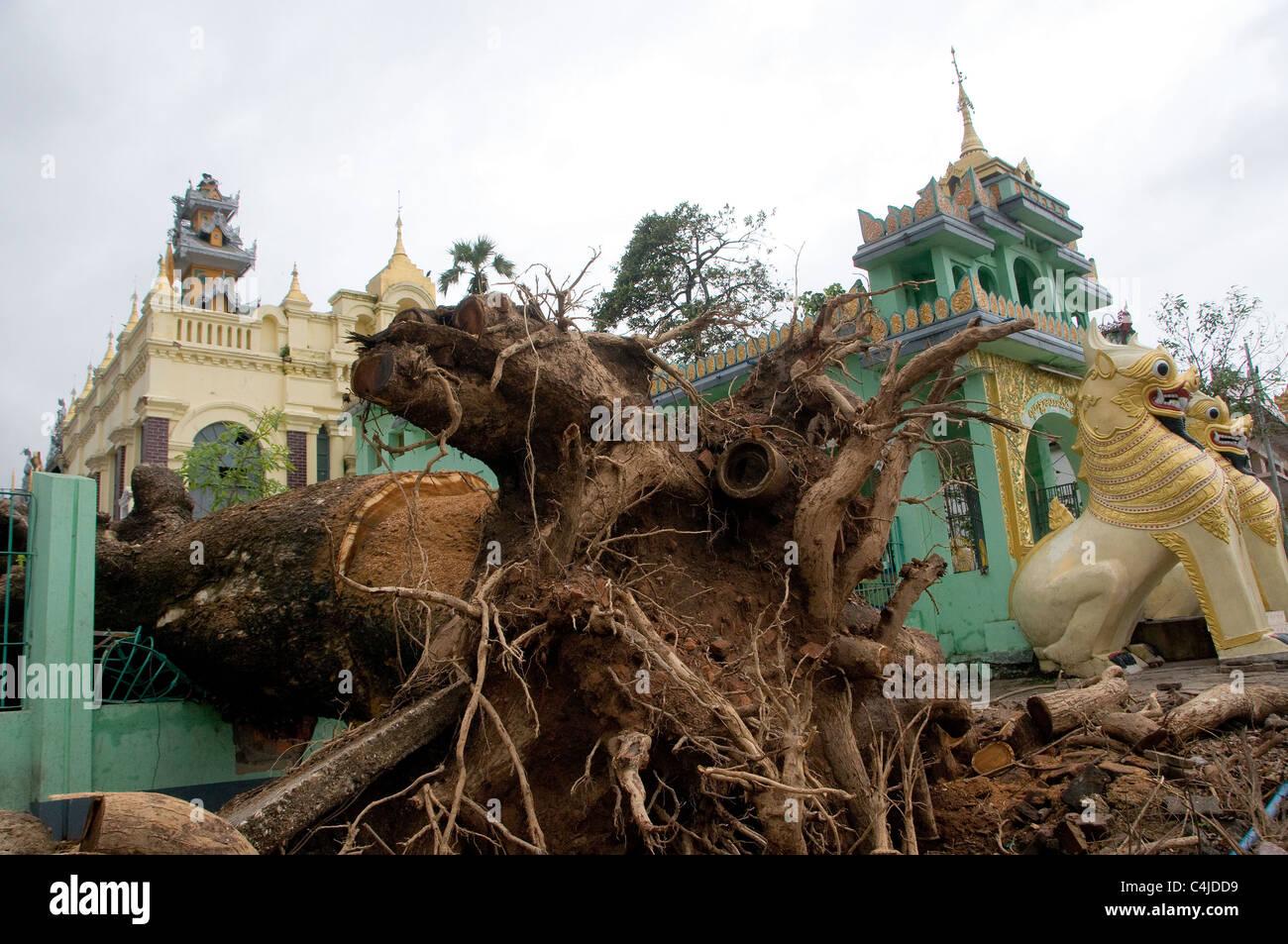 Resultado de imagen de Ciclón Nargis devastó las regiones de Ayeyarwady y Yangon