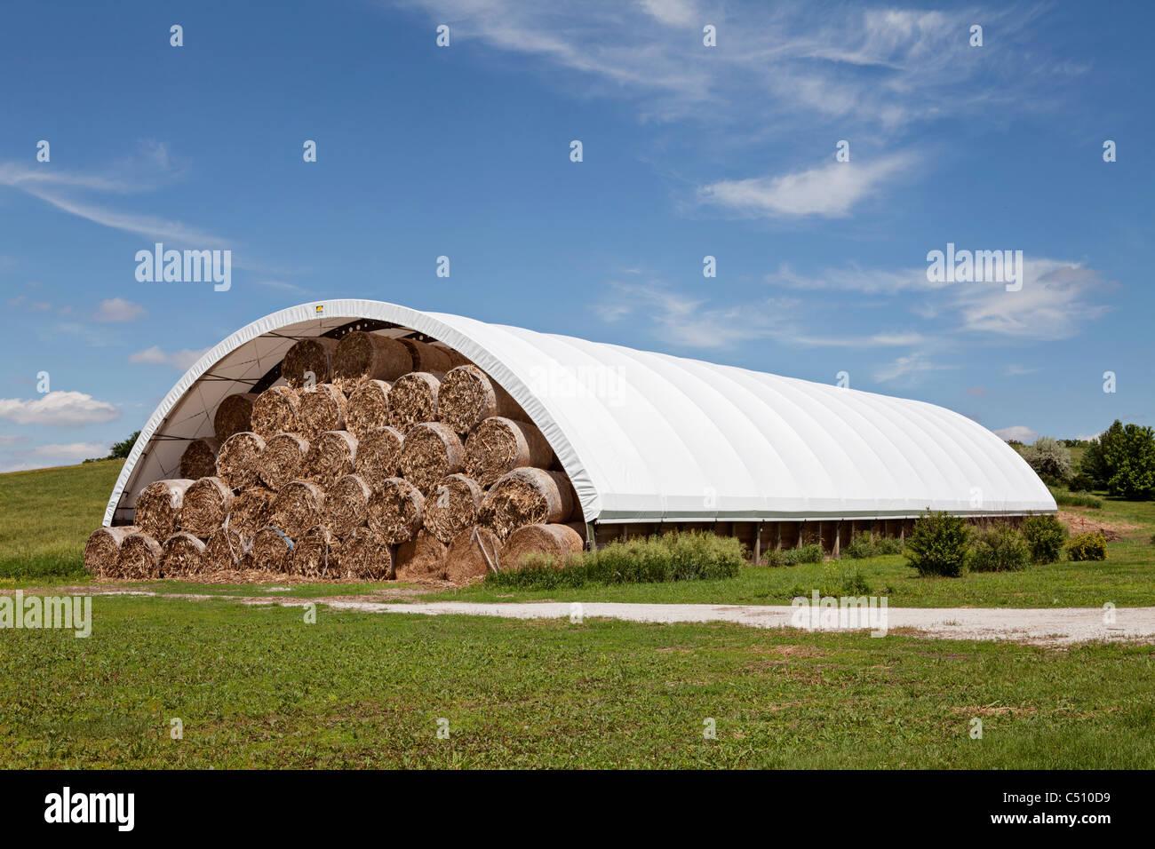 Grande y redondo hierba heno paja alfalfa fardos - Cortar hierba alta ...