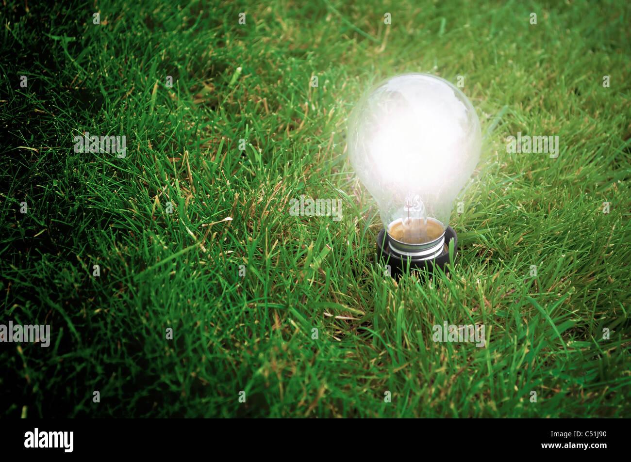 Concepto de energía alternativa - lámpara de luz brillando en la hierba en la noche Imagen De Stock