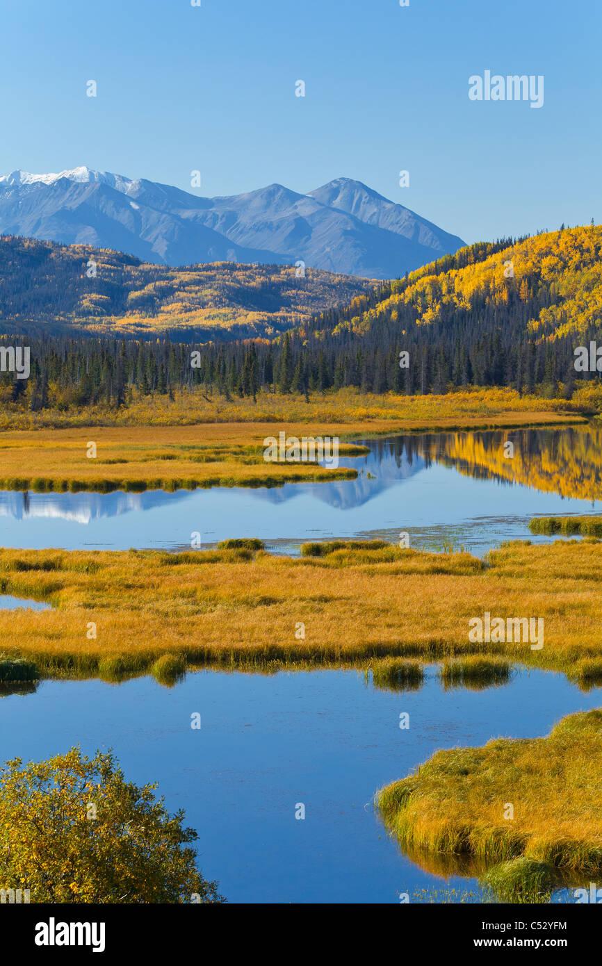 Vista panorámica de los humedales colores de otoño a lo largo de la autopista de Alaska entre Haines y Imagen De Stock