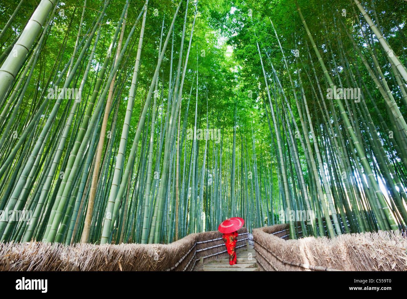 Mujer y caminando en un bosque de bambú, de Adashino nenbutsu-ji, Arashiyama, Prefectura de Kioto, Región de Kinki, Foto de stock