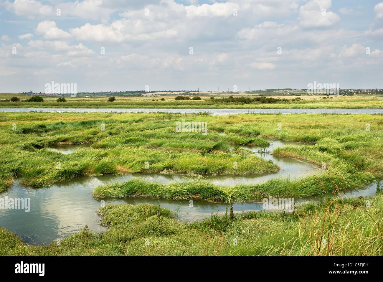 Creek en Benfleet West Canvey Marsh Reserva en Canvey Isla. Foto de stock