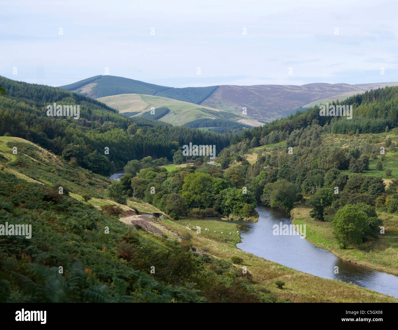 Ettrick Water & Bowhill - Selkirk - Scottish Borders Imagen De Stock
