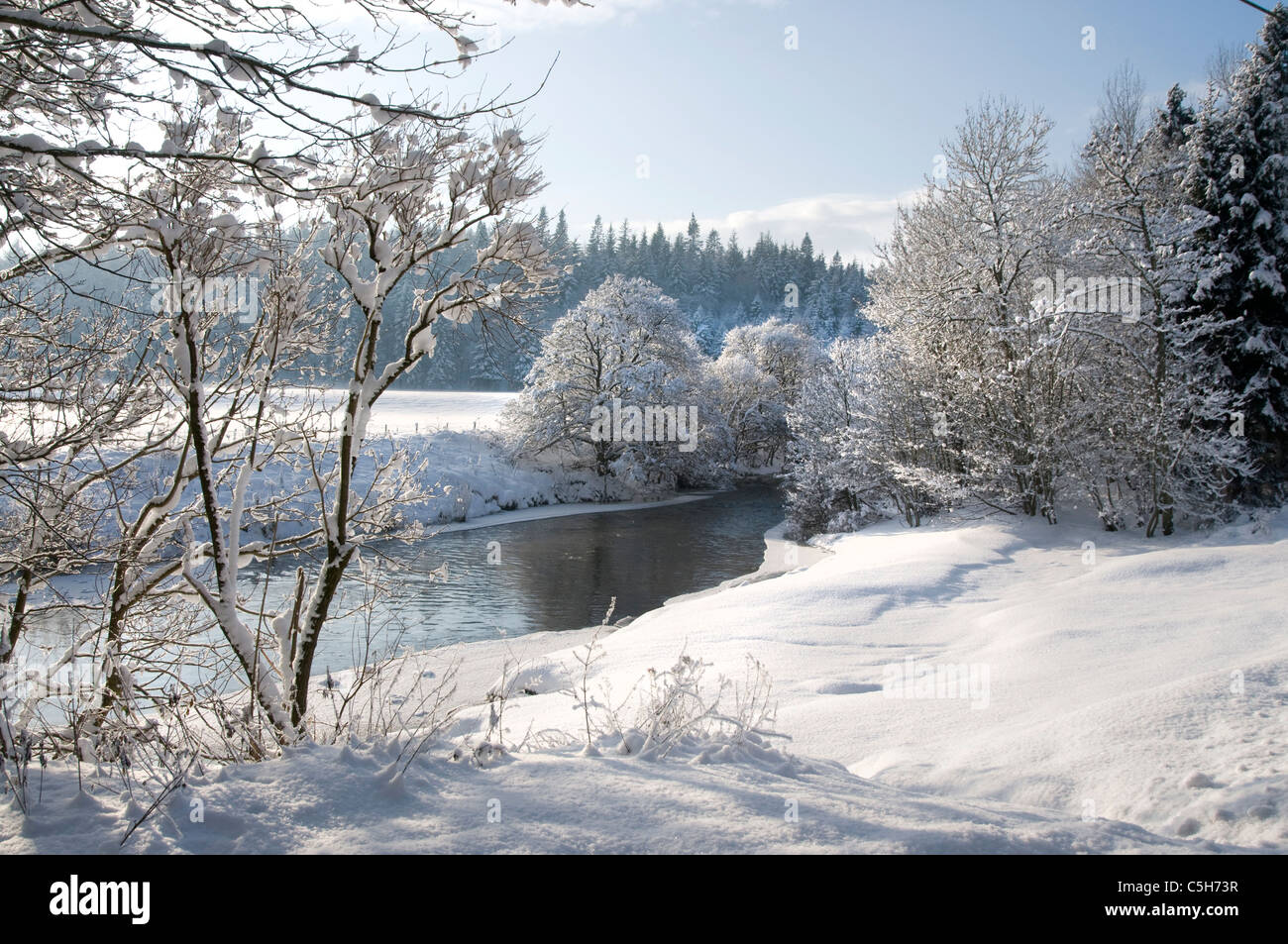Yarrow agua en nieve profunda Imagen De Stock