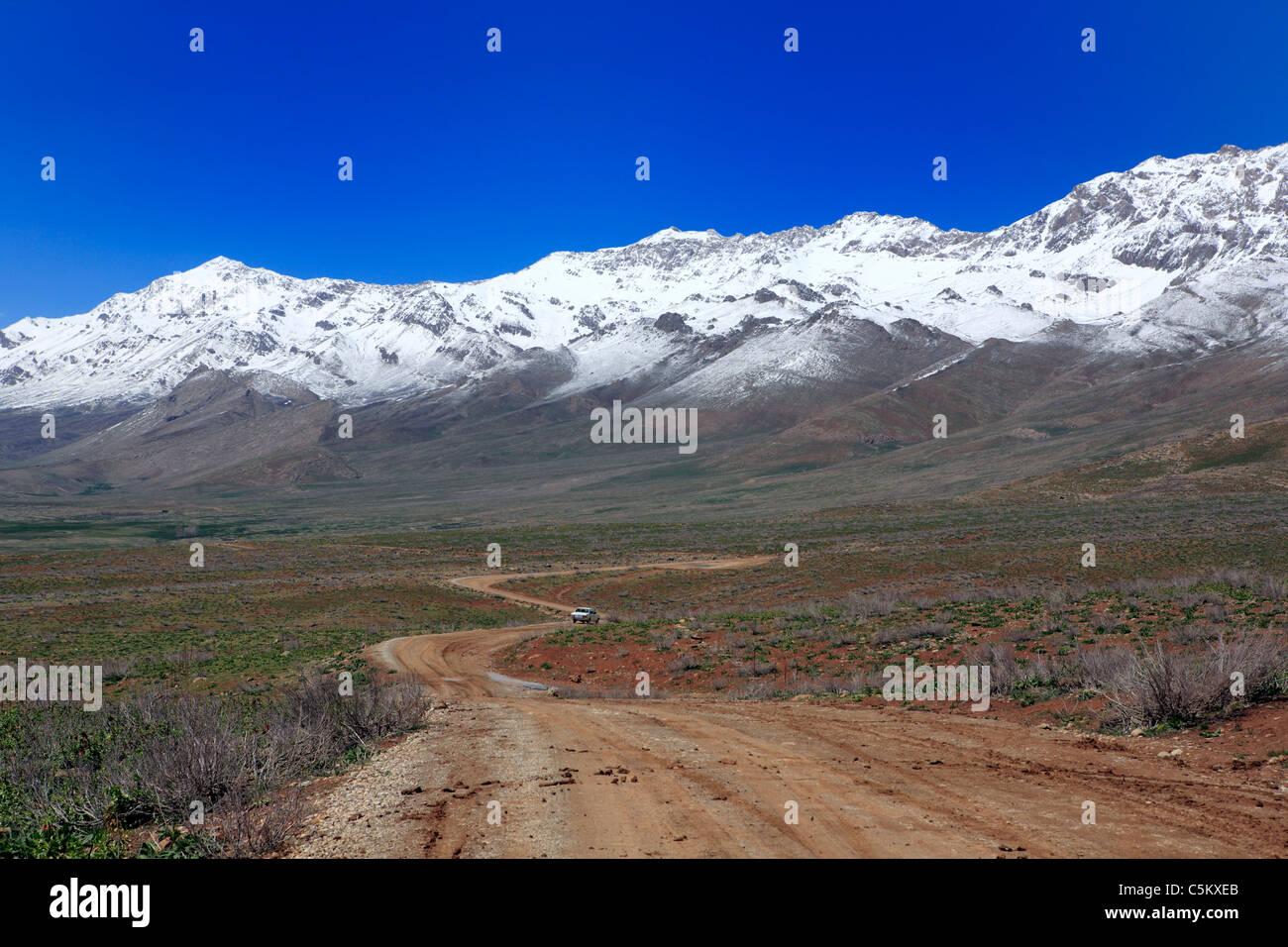 Tulip Valley (Lale Dasht-e), los montes Zagros, provincia Chahar-Mahal y Bakhtyaria, Irán Foto de stock