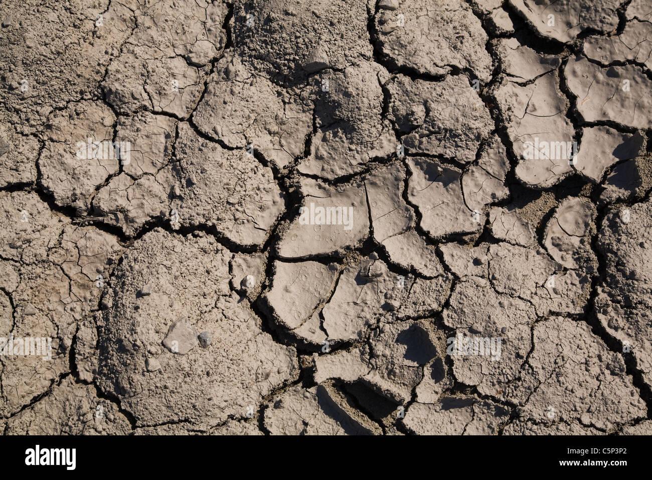 Tierra agrietada Imagen De Stock