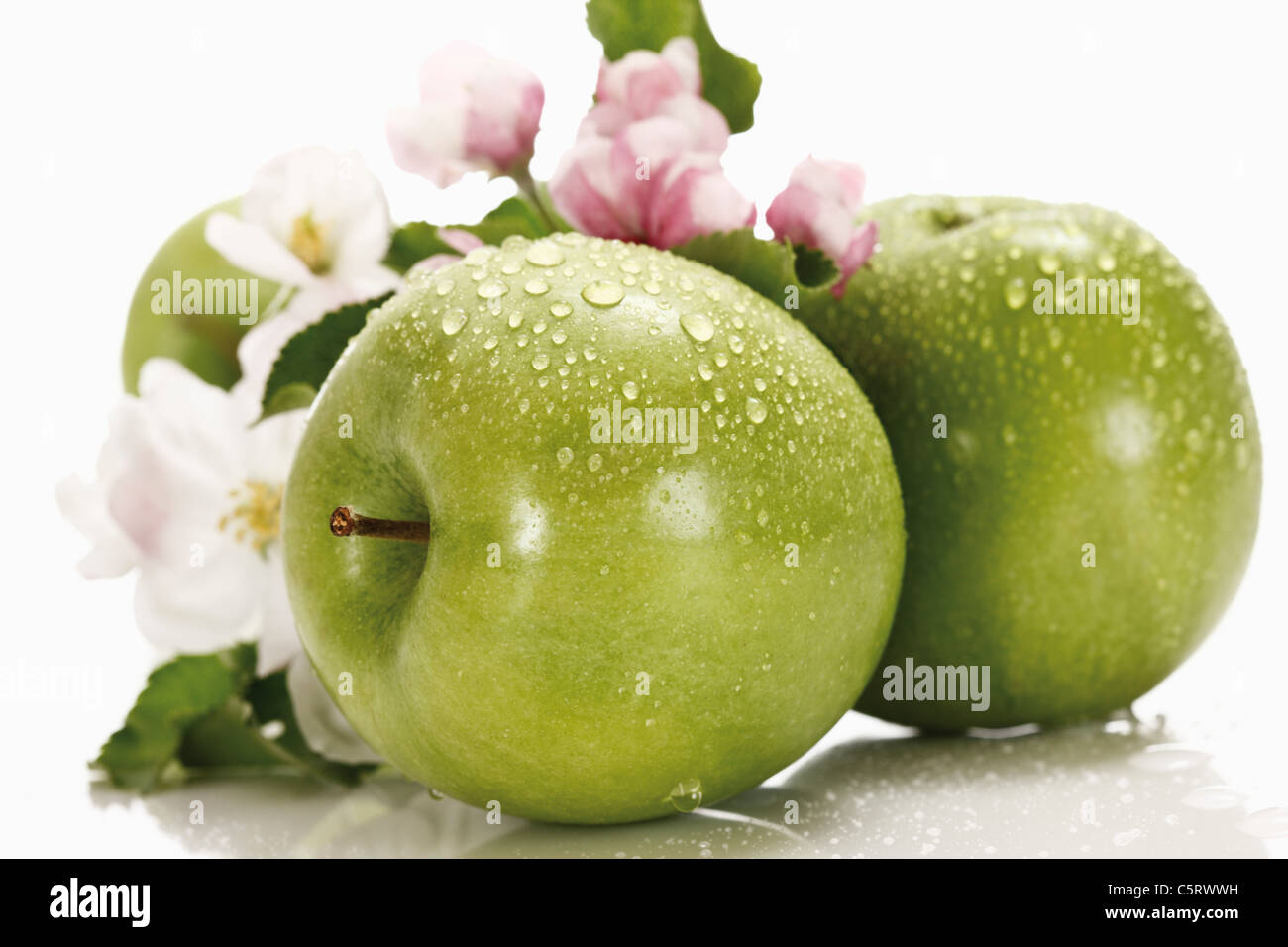 Las manzanas verdes con gotas de agua en el fondo, Apple Blossom close-up Imagen De Stock