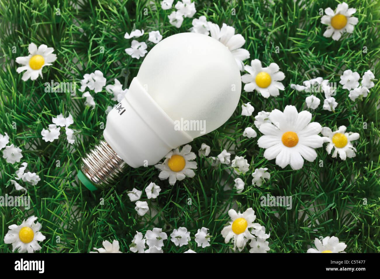 Bombilla de ahorro de energía, elevada en césped sintético ver Imagen De Stock
