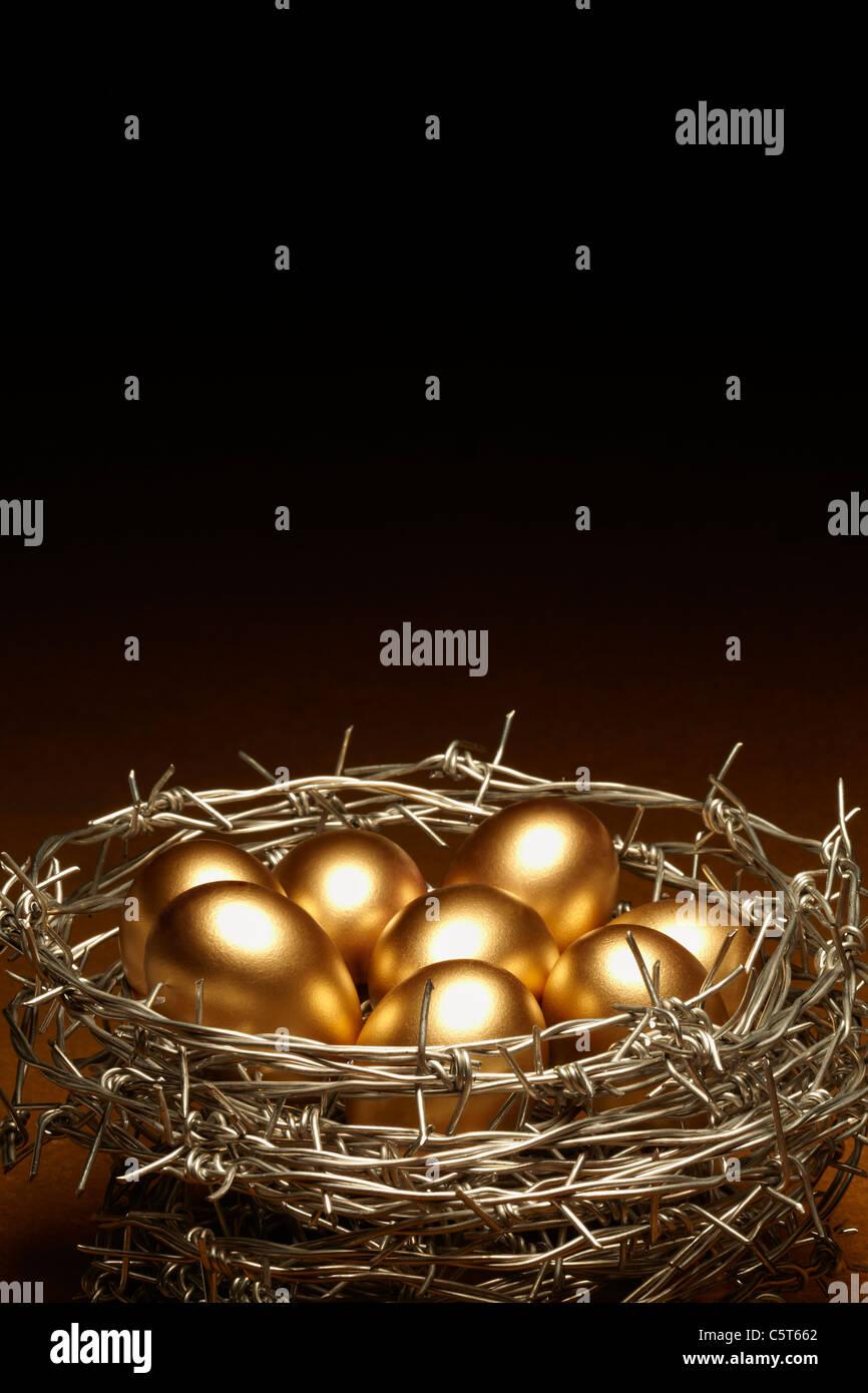 Concepto de nido de huevos que simboliza la seguridad Imagen De Stock