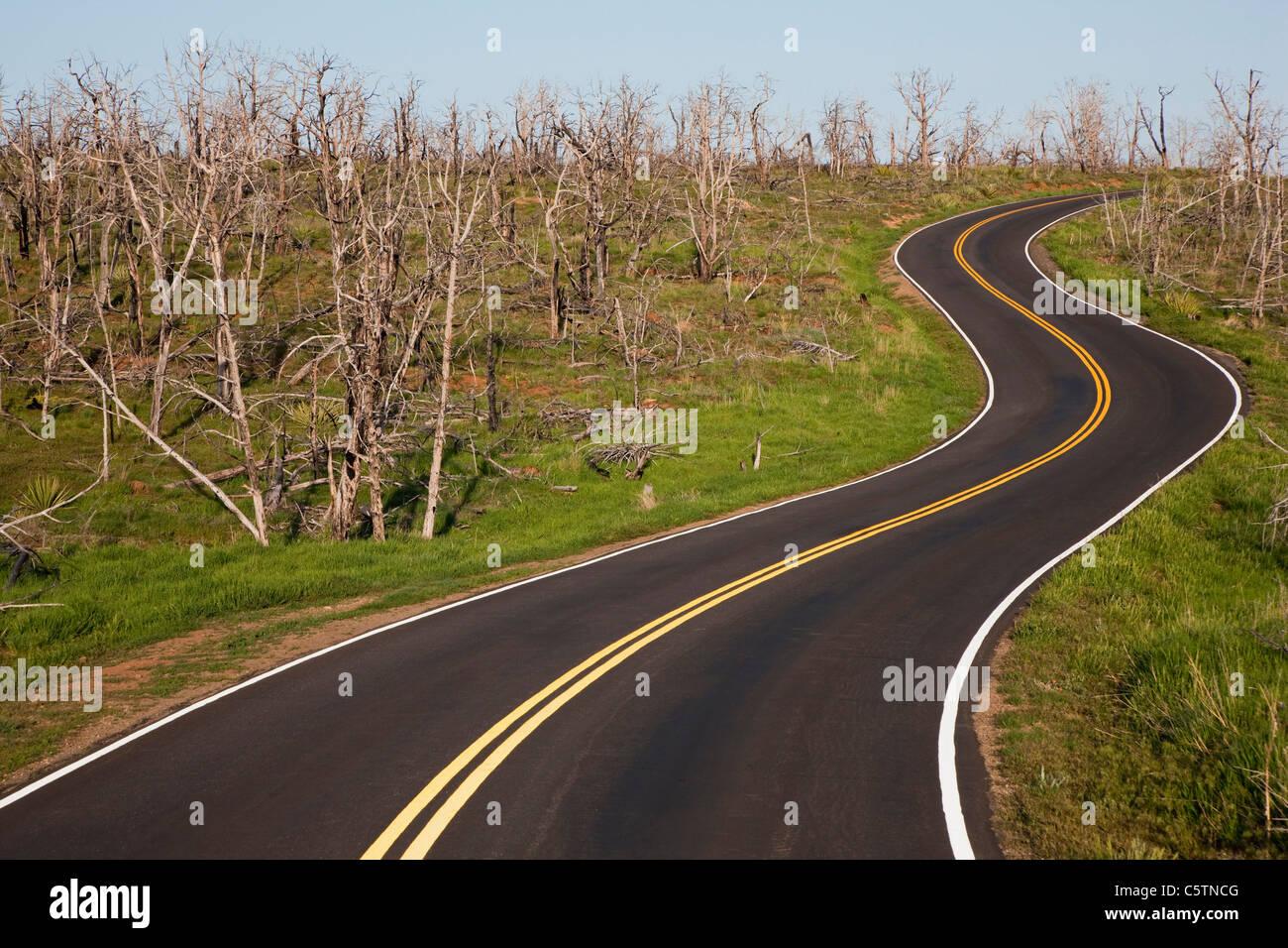 Ee.Uu., Colorado, Parque Nacional Mesa Verde, carretera vacía serpenteando a través paisaje Imagen De Stock