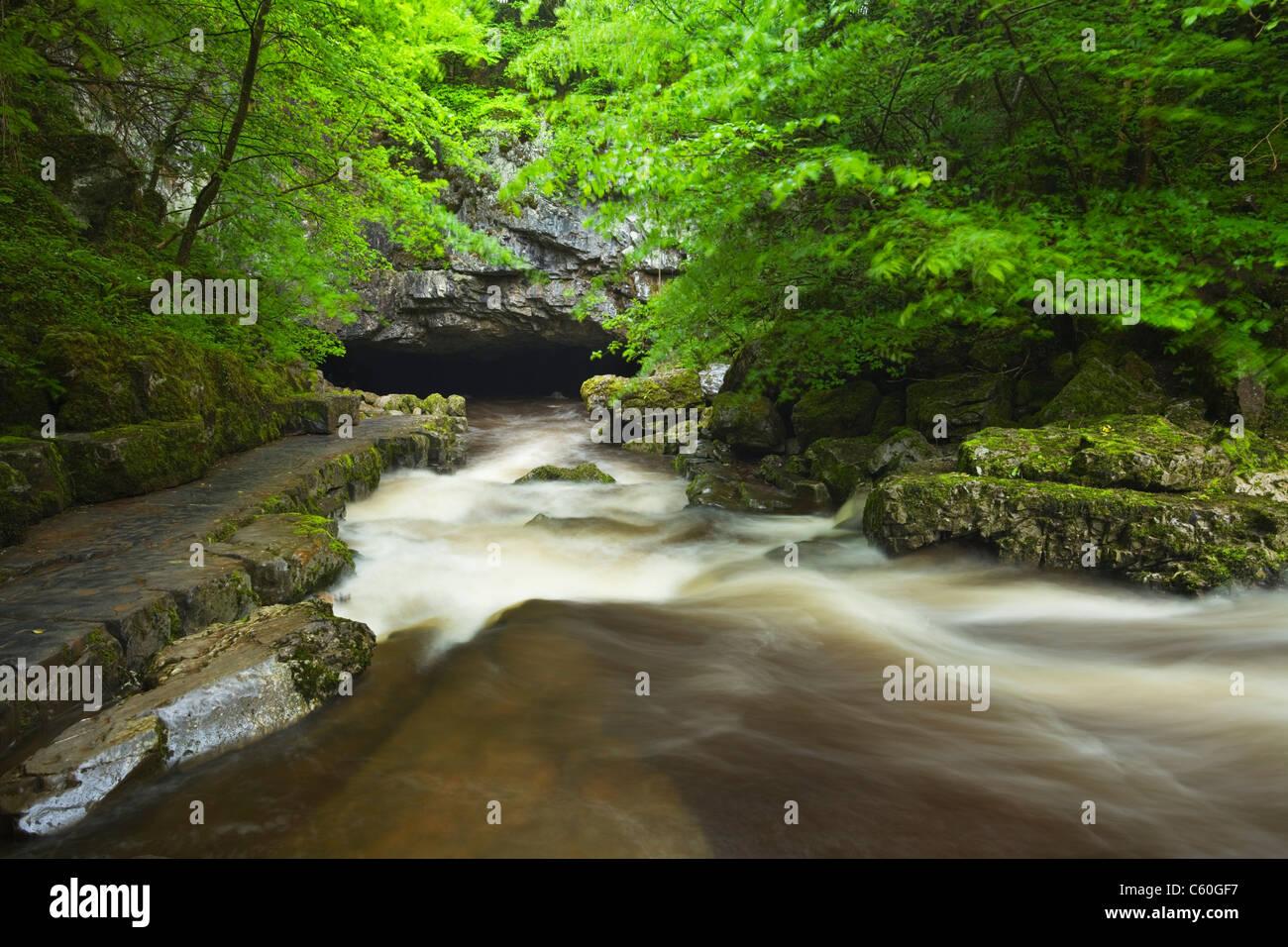 Río Mellte fluyen a Porth yr Ogof Ystradfellte cueva cerca. Parque Nacional de Brecon Beacons. Powys. País de Gales. Foto de stock