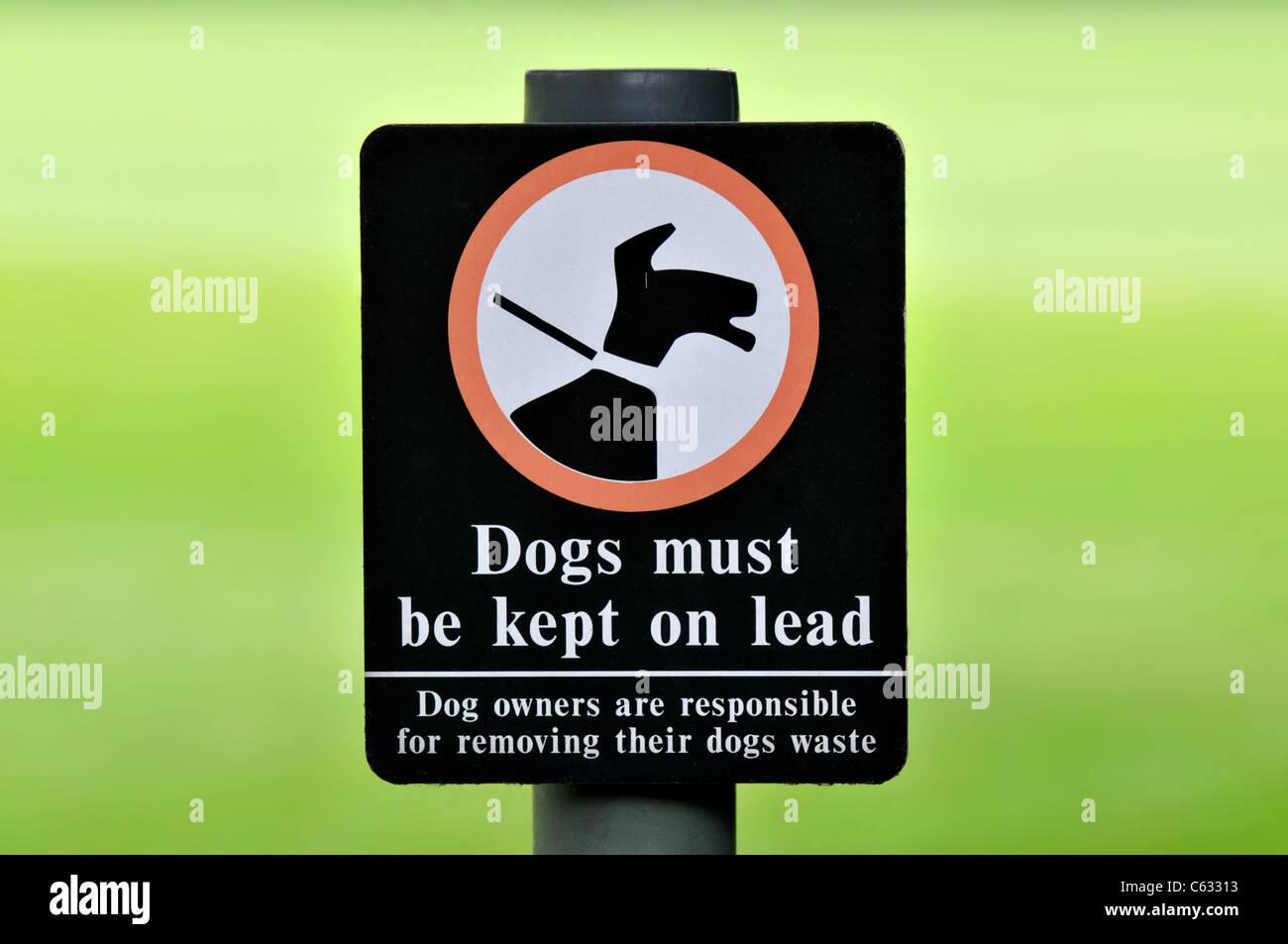 Los perros deben mantenerse en signo de plomo Imagen De Stock