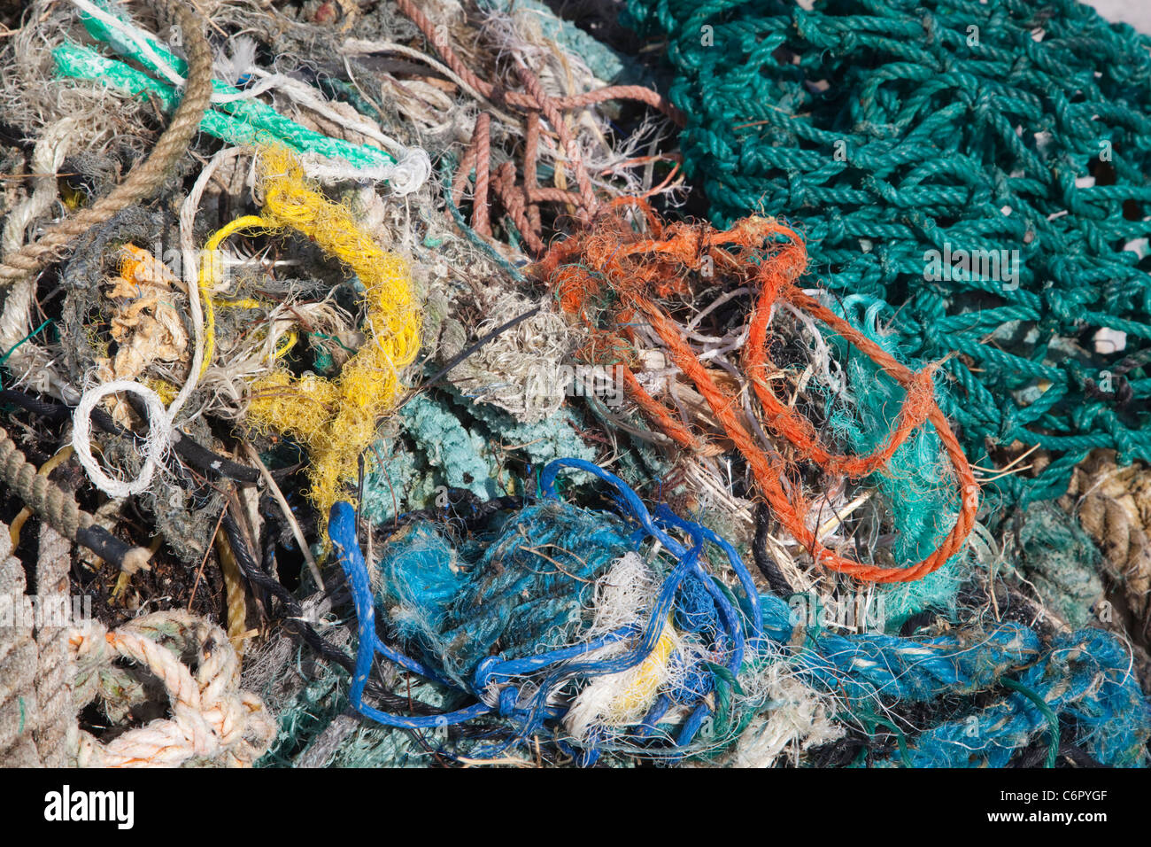 Redes y sogas de plástico recogidos en una isla del Pacífico Norte por los turistas para evitar daños a las aves marinas u otros animales salvajes Foto de stock