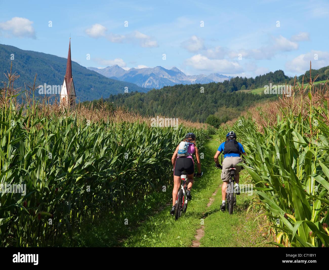 Dos ciclistas de montaña están a caballo entre los campos de maíz en el Pustertal, con una iglesia Imagen De Stock