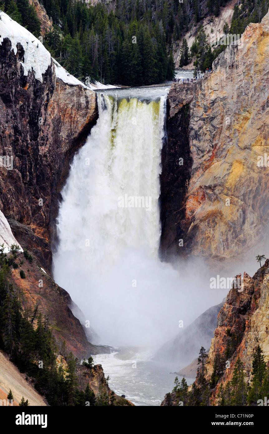Yellowstone inferior cae en el pico de flujo en la primavera en el Parque Nacional Yellowstone, Wyoming. Imagen De Stock