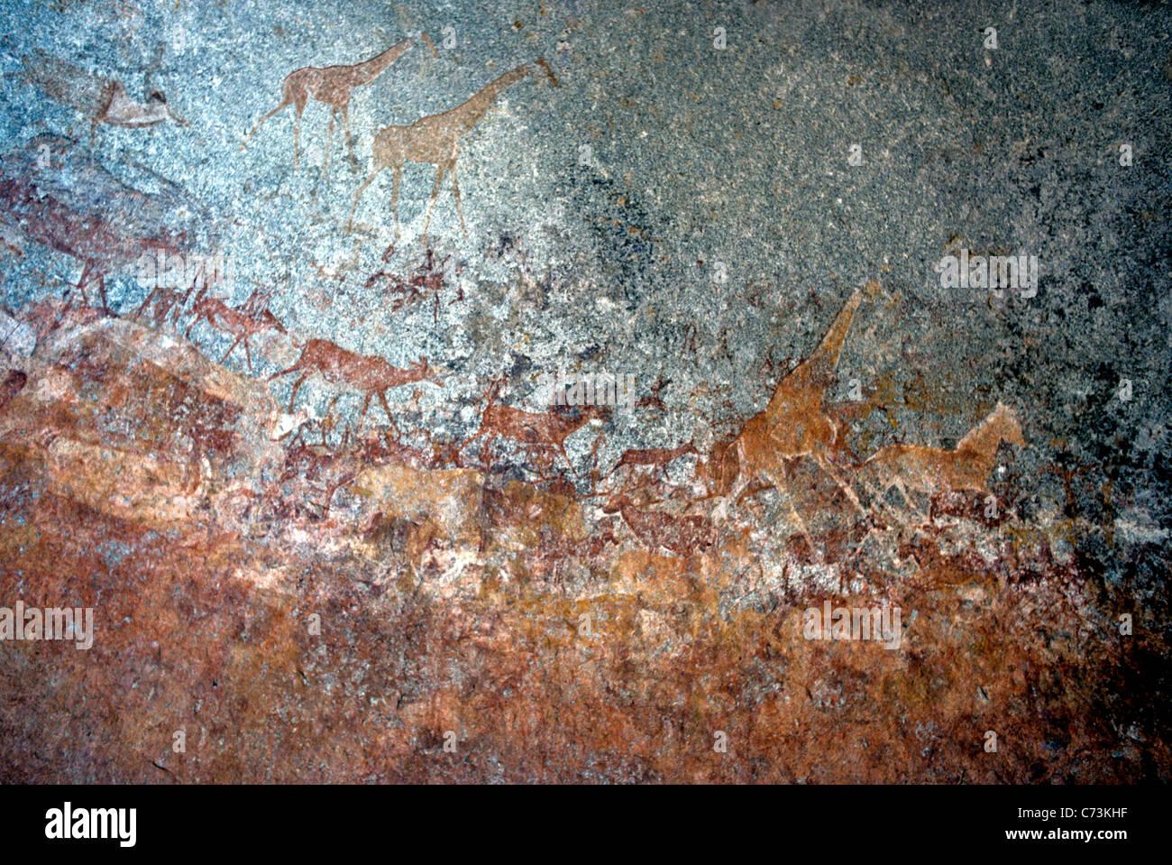 Friso de pinturas Bushman Nswatugi Cueva en los montes Matopo de Zimbabwe mayormente jirafas y Eland Imagen De Stock