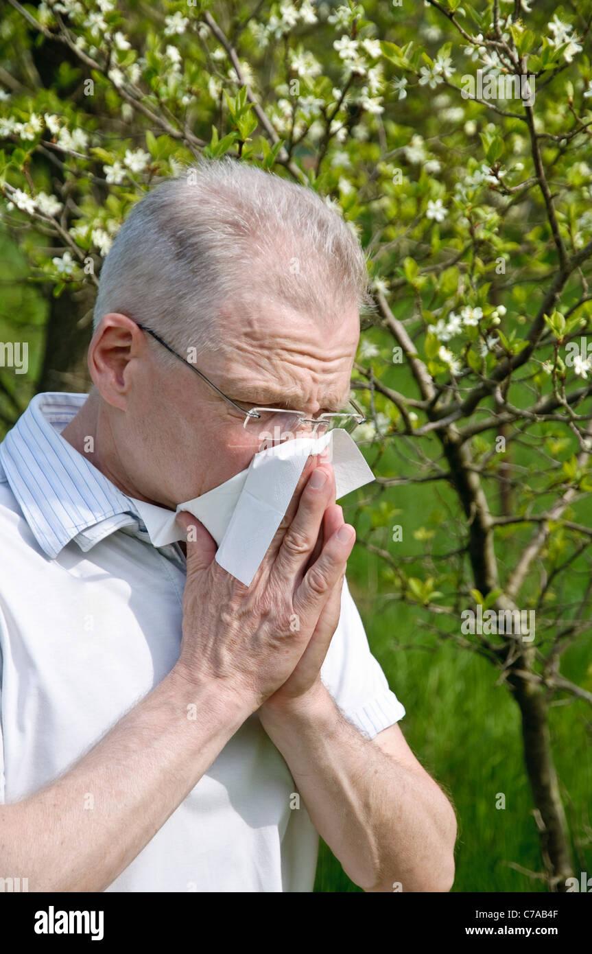 Hombre con pañuelo, la fiebre del heno, alergias Imagen De Stock