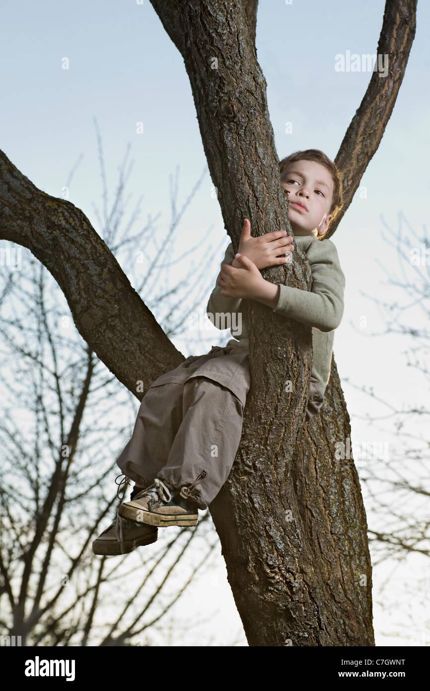 Un infeliz muchacho sentado en una rama de un árbol de agarre Imagen De Stock