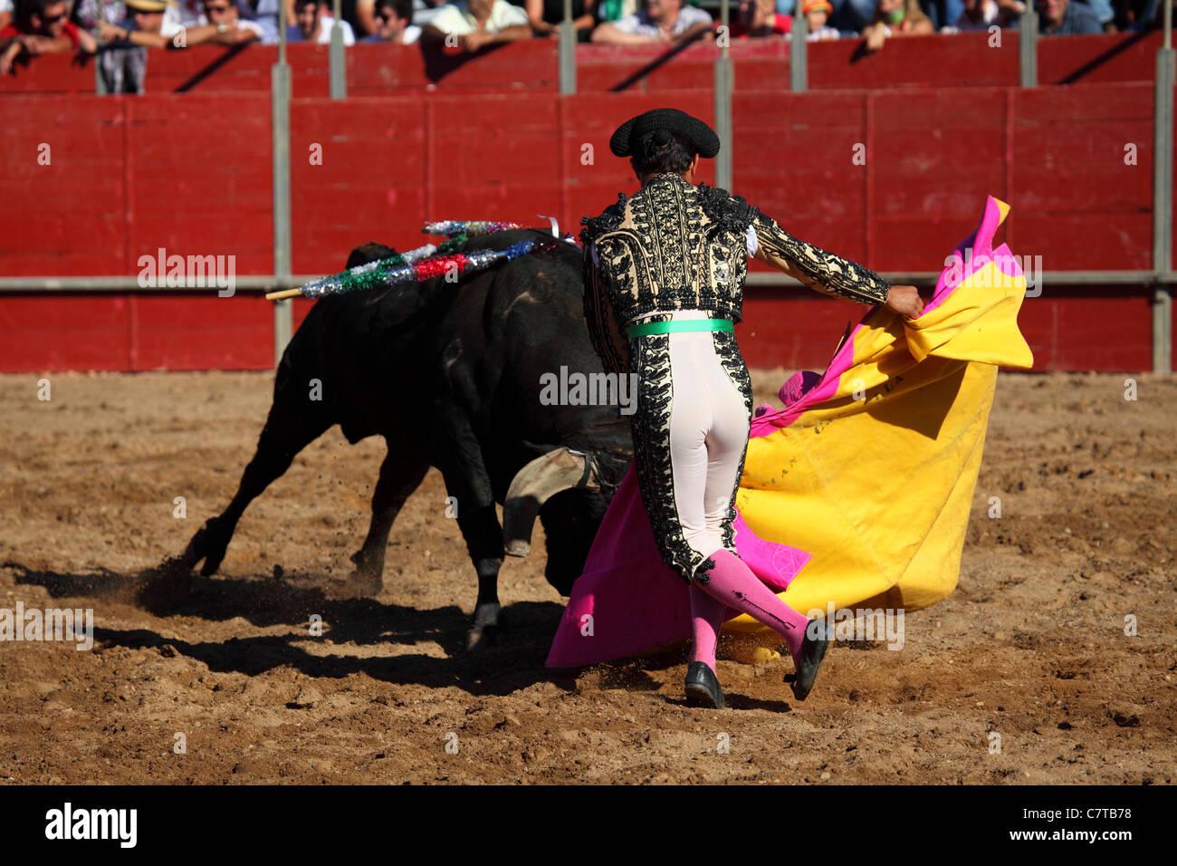 Un torero (Bandarilheiro) en acción durante una corrida de toros. Imagen De  Stock ccb70855880