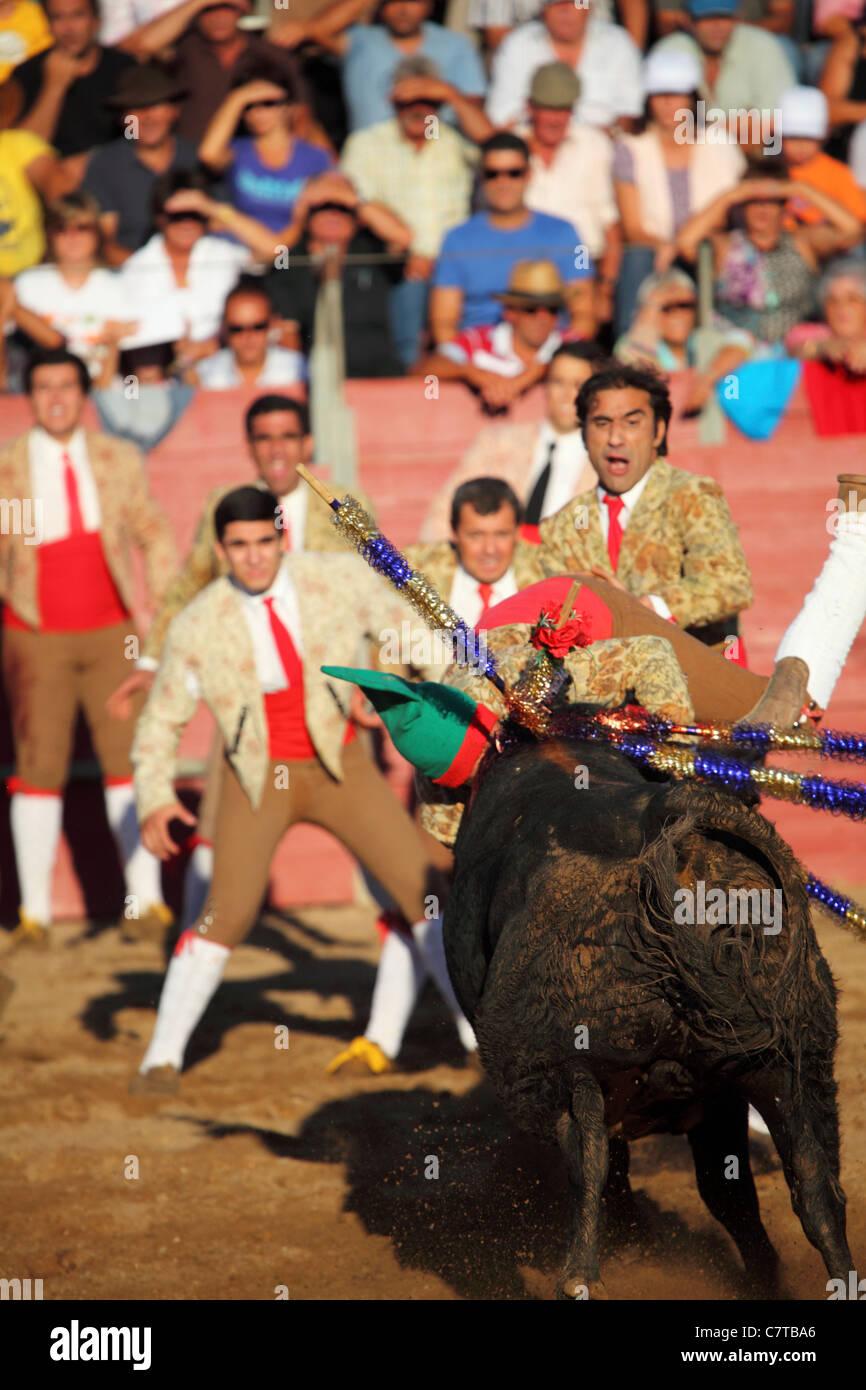 Un equipo de toreros (Forcados) intentan detener un toro de carga durante  una corrida ac00d1ffa54