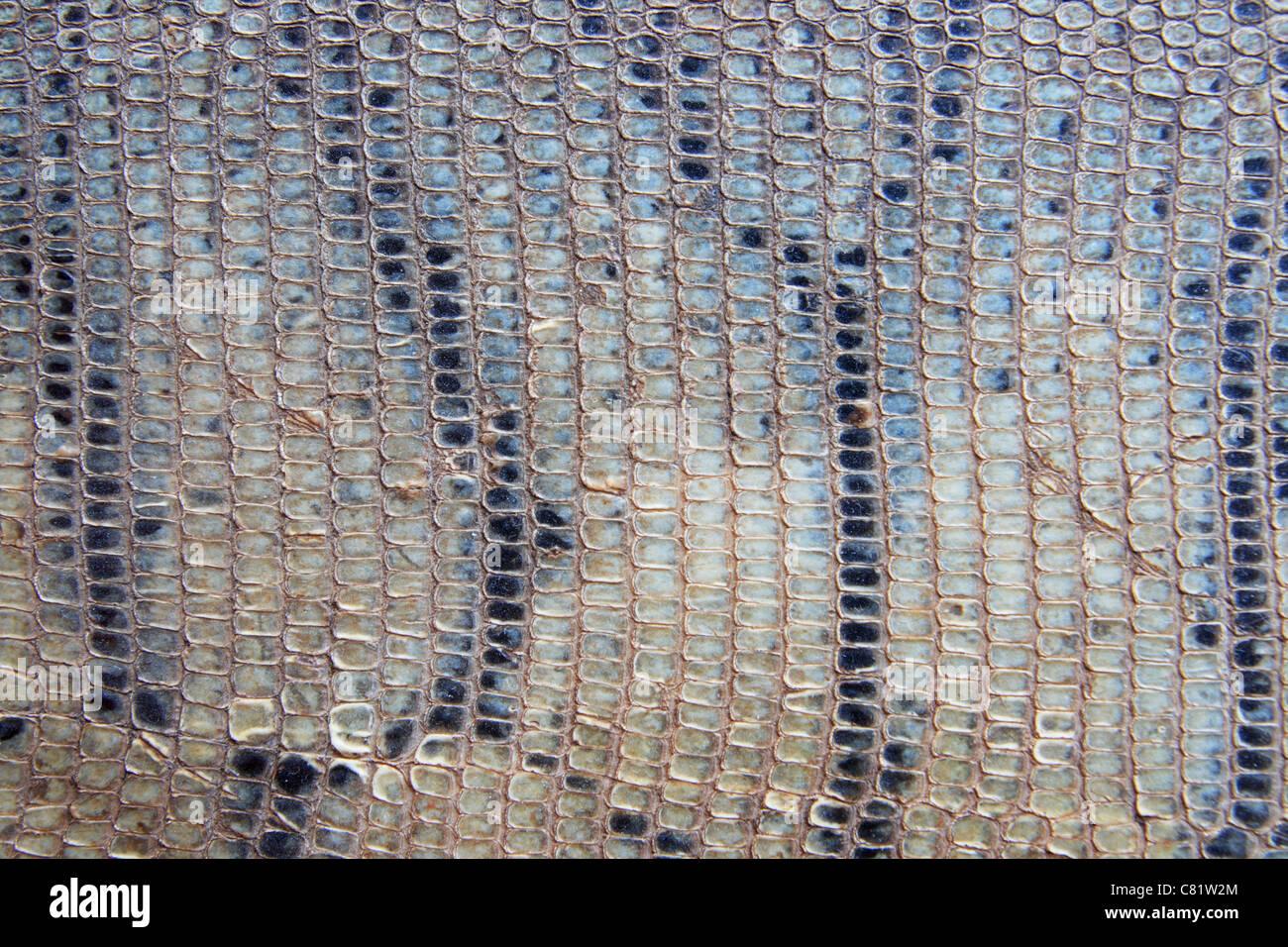 Viejo dañado escamados rayas grises de fondo de la piel Imagen De Stock