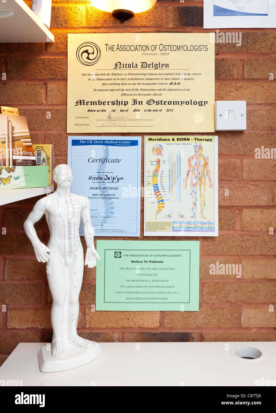 Diplomas y certificados por un terapeuta de Salud osteomyolist Imagen De Stock