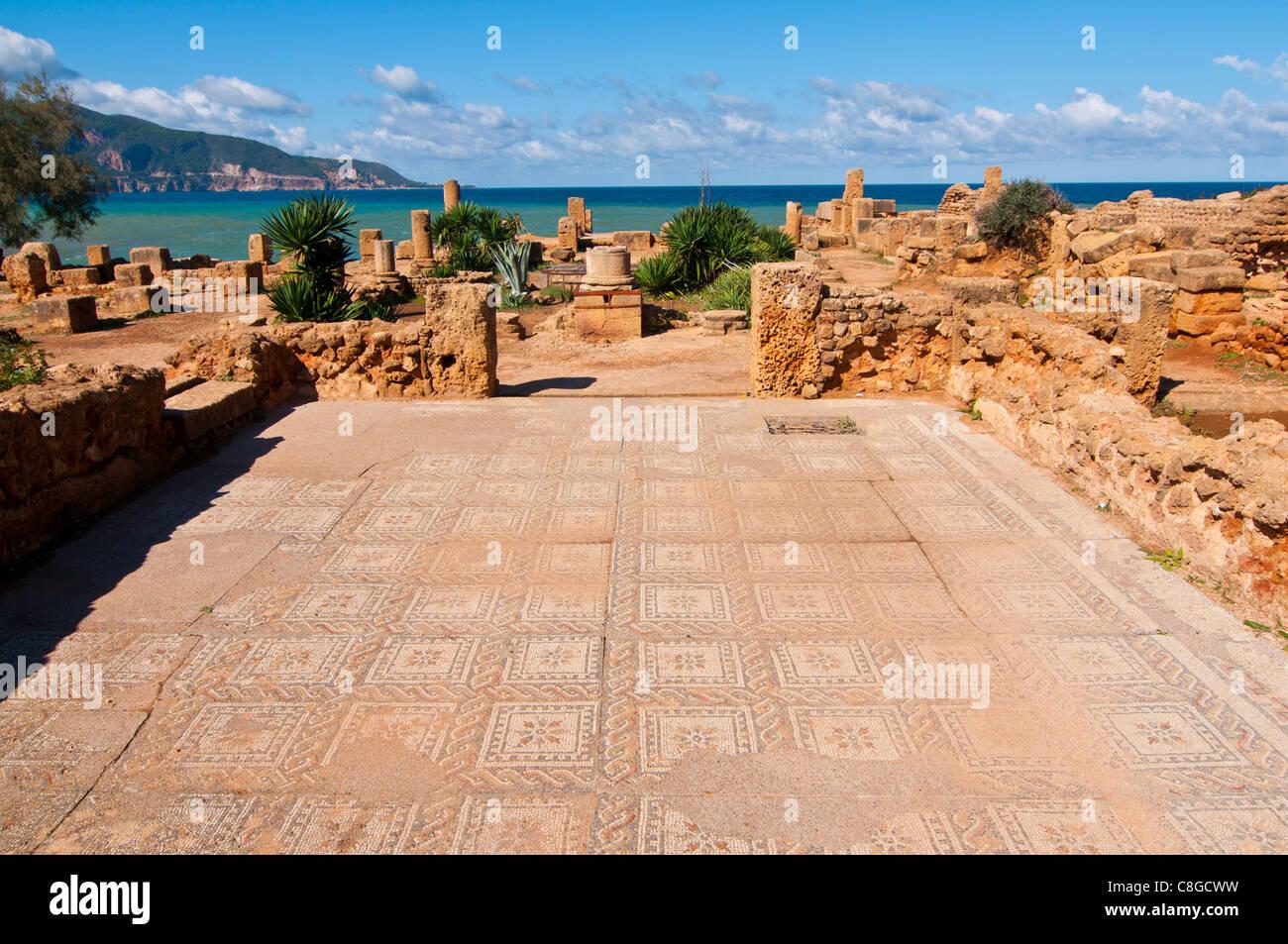 Mosaicos en las ruinas romanas de Tipasa, Sitio del Patrimonio Mundial de la UNESCO, en la costa argelina, Argelia, Imagen De Stock