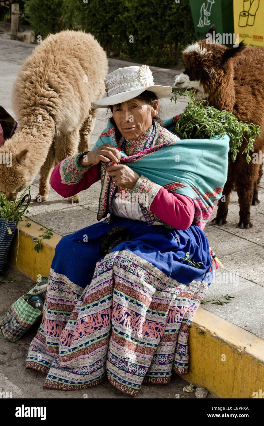Mujer Peruana vistiendo trajes tradicionales con alpaca Chivay Cañon del  Colca Perú Imagen De Stock 709e94de5bc