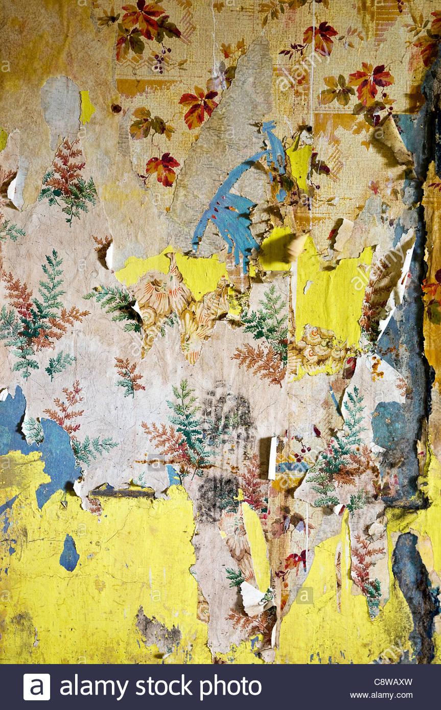 Peeling wallpaper im genes de stock peeling wallpaper - Papel pintado antiguo ...
